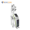 Fat Freezing Cryolipolysis Machine with CE Certificate