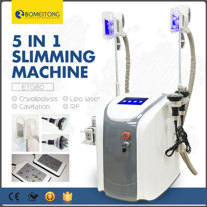 5 in 1 Professional Cryolipolysis Machine 2019 Price