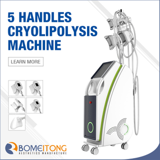 Cryolipolysis Fat Freezing Machine for Sale with 5 Handles