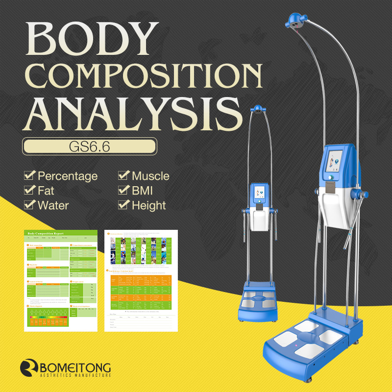 Professional Body Composition Analyzer with Printer